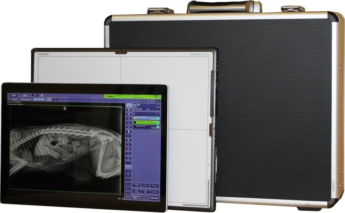 Digitalsysteme (DR-Systeme)